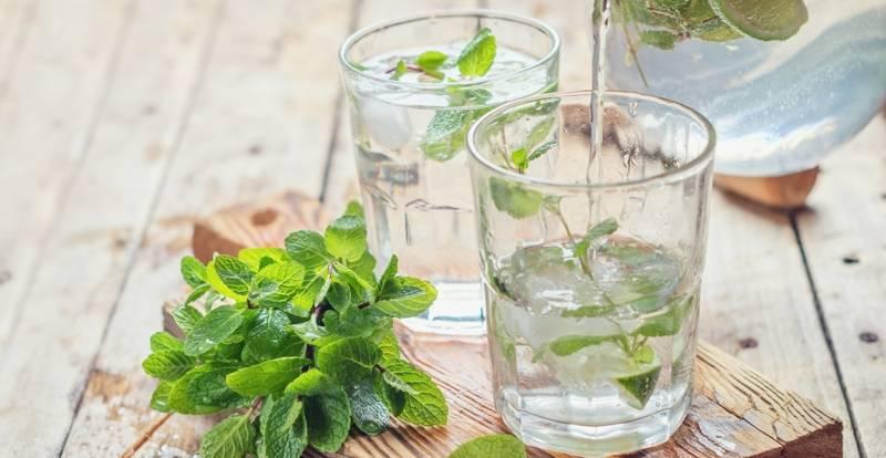 Bebidas infusiones tratar insomnio
